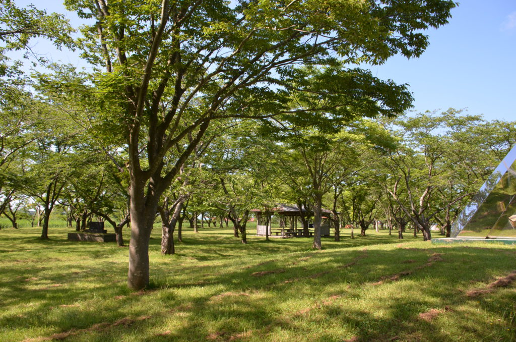 南の池公園・キャンプ場