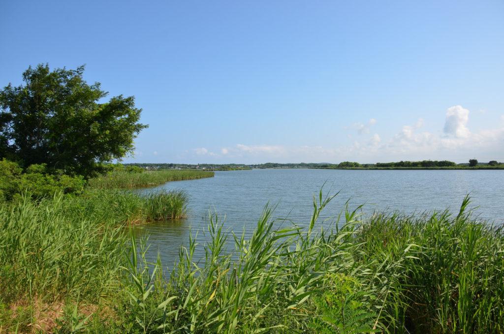 八郎潟西部承水路